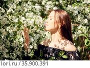Girl inhales the scent of a blooming apple tree. Стоковое фото, фотограф Евгений Харитонов / Фотобанк Лори
