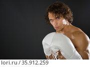 one boxer. Стоковое фото, фотограф Shannon Fagan / Ingram Publishing / Фотобанк Лори