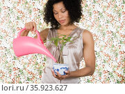 Woman watering houseplant. Стоковое фото, фотограф Shannon Fagan / Ingram Publishing / Фотобанк Лори