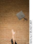 Graduate throwing their mortar board. Стоковое фото, фотограф Shannon Fagan / Ingram Publishing / Фотобанк Лори