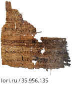 Papyrus with a line of Virgil's Aeneid. Редакционное фото, агентство World History Archive / Фотобанк Лори