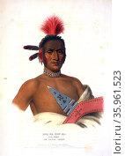 Moa-Na-Hon-Ga, Great Walker. An Ioway chief. Редакционное фото, агентство World History Archive / Фотобанк Лори