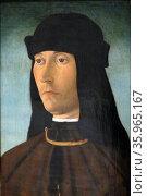 Portrait of Alessandro de Richao, by Filippo Mazzola. Редакционное фото, агентство World History Archive / Фотобанк Лори