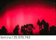 Aurora Australis, the Southern Lights. Редакционное фото, агентство World History Archive / Фотобанк Лори