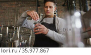 Caucasian man working at gin distillery, wearing apron, fastening lid on bottle of gin. Стоковое видео, агентство Wavebreak Media / Фотобанк Лори