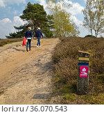 Hohe Mark Steig, Naturschutzgebiet Westruper Heide, Haltern am See... Стоковое фото, фотограф Zoonar.com/Stefan Ziese / age Fotostock / Фотобанк Лори
