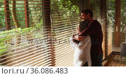 Happy diverse couple embracing and smiling in living room, looking out of window in the countryside. Стоковое видео, агентство Wavebreak Media / Фотобанк Лори