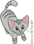 Cartoon illustration of cute tabby kitten comic animal character. Стоковое фото, фотограф Zoonar.com/Igor Zakowski / easy Fotostock / Фотобанк Лори