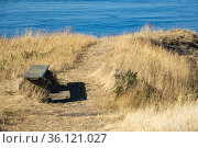 A bench at East Point on Saturna Island, BC, Canada. Стоковое фото, фотограф Douglas Williams / age Fotostock / Фотобанк Лори