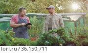 Diverse male gardeners using tablet and talking at garden center. Стоковое видео, агентство Wavebreak Media / Фотобанк Лори