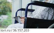 Bored asian female patient sitting in wheelchair using smartphone at hospital. Стоковое видео, агентство Wavebreak Media / Фотобанк Лори