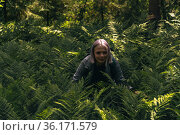 Girl in a foggy forest among ferns is passionate about nature. Стоковое фото, фотограф Евгений Харитонов / Фотобанк Лори