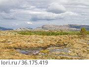 Idyllisches Hochmoor mit Tümpel auf der Insel Indre-Vikna. Стоковое фото, фотограф Zoonar.com/Eder Christa / easy Fotostock / Фотобанк Лори