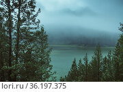 Misty morning in the Rocky Mountains - Alberta, Canada. Стоковое фото, фотограф Mehul Patel / age Fotostock / Фотобанк Лори