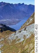 Man walking along the vast hillside of Rochers-de-Naye near Montreux... Стоковое фото, фотограф Mehul Patel / age Fotostock / Фотобанк Лори