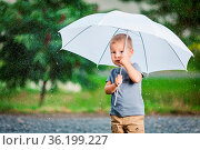 Adorable child holding an umbrella during a rain storm. Стоковое фото, фотограф Zoonar.com/Tomas Anderson / easy Fotostock / Фотобанк Лори
