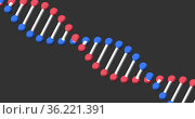 Image of a digital 3d red, blue and white double helix DNA. Стоковое фото, агентство Wavebreak Media / Фотобанк Лори