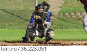 Caucasian female baseball player in catcher position catching ball on baseball field. Стоковое видео, агентство Wavebreak Media / Фотобанк Лори
