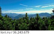 Ausblick von Süddeutschland auf die österreichischen Alpen mit Kiefern... Стоковое фото, фотограф Zoonar.com/Christian Länger / easy Fotostock / Фотобанк Лори