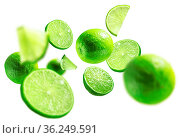 Green lime levitated on a white background. Стоковое фото, фотограф Zoonar.com/Aleksey Butenkov / easy Fotostock / Фотобанк Лори