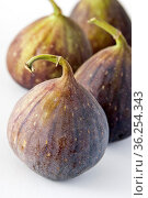 Four figs grouped on white background. Стоковое фото, фотограф Zoonar.com/Suzanne Goodwin / easy Fotostock / Фотобанк Лори