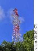 Опора высоковольтной ЛЭП на фоне деревьев и синего неба. Стоковое фото, фотограф Цибаев Алексей / Фотобанк Лори