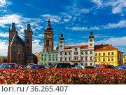 Gothic Cathedral of the Holy Spirit. Hradec Kralove. Стоковое фото, фотограф Яков Филимонов / Фотобанк Лори