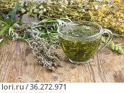 Полынь горькая (Artemisia absinthium L. ) чайный напиток. Полынь применяется в народной медицине,кулинарии,парфюмерной промышленности. Стоковое фото, фотограф Наталия Кузнецова / Фотобанк Лори
