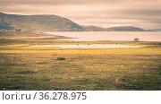 Landscape with scandinavian cottage along a lake in haze in the early... Стоковое фото, фотограф Zoonar.com/Hilda Weges / easy Fotostock / Фотобанк Лори