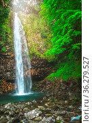 Small waterfall in the dense jungle of the tropical island of Sumatra... Стоковое фото, фотограф Zoonar.com/Pawel Opaska / easy Fotostock / Фотобанк Лори