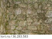 Natursteinmauer -Detailaufnahme eines alten Brunnens aus dem römischen... Стоковое фото, фотограф Zoonar.com/Eder Christa / easy Fotostock / Фотобанк Лори