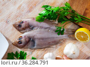 Gallo pescado on cutting board with lemon and parsley. Стоковое фото, фотограф Яков Филимонов / Фотобанк Лори