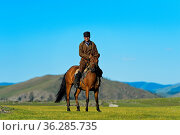 Reiter und Pferd in der Steppe, Orchon-Tal, Mongolei / Horseman in... Стоковое фото, фотограф Zoonar.com/GFC Collection / age Fotostock / Фотобанк Лори