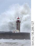 Leuchtturm von Porto im Sturm, Portugal, Europa / Lighthouse of Porto... Стоковое фото, фотограф Zoonar.com/Stefan Ernst / age Fotostock / Фотобанк Лори