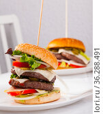 Two delicious double tasty hamburger with beef cutlet and vegetables. Стоковое фото, фотограф Яков Филимонов / Фотобанк Лори
