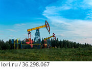 Oil pumping stations in a clearing in the forest. Стоковое фото, фотограф Евгений Харитонов / Фотобанк Лори