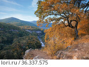 The Caucasus nature reserve in Adygea Republic, Russia. Стоковое фото, фотограф Алексей Кузнецов / Фотобанк Лори