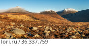 Landscape of mountains Doan Ben Crom, Slieve Lamagan, Slieve Binnian from Lough Shannagh Track, Mourne Mountains, County Down, Northern Ireland, December 2020. Стоковое фото, фотограф Robert  Thompson / Nature Picture Library / Фотобанк Лори