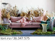 Young sweet woman posing in a living room in the middle of tall grass. Стоковое фото, фотограф Алексей Кузнецов / Фотобанк Лори