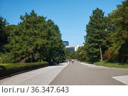 Promenade trail on the territory of old Edo castle in the Tokyo Imperial Palace. Tokyo. Japan (2019 год). Стоковое фото, фотограф Serg Zastavkin / Фотобанк Лори
