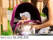 Cute baby in a stroller for a walk with mom. Стоковое фото, фотограф Евгений Харитонов / Фотобанк Лори