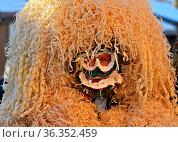Wüeschte Silversterklaus mit einer Maske aus Holzwolle, Silvesterchlausen... Стоковое фото, фотограф Zoonar.com/Pant / age Fotostock / Фотобанк Лори