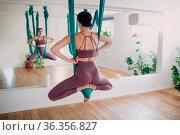 Aerial yoga concept. Woman practicing fly yoga in anti-gravity yoga... Стоковое фото, фотограф Zoonar.com/Max / easy Fotostock / Фотобанк Лори