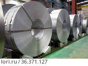 Rolls of steel sheet in a plant, galvanized steel coil. Стоковое фото, фотограф David Herraez Calzada / easy Fotostock / Фотобанк Лори