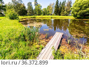 Summer landscape with small pond at the village in summer sunny day. Стоковое фото, фотограф Zoonar.com/Alexander Blinov / easy Fotostock / Фотобанк Лори