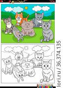 Cartoon illustration of funny cats characters group coloring book page. Стоковое фото, фотограф Zoonar.com/Igor Zakowski / easy Fotostock / Фотобанк Лори