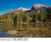 Zwei Enten auf dem glasklaren Hintersee in Berchtesgaden mit verschneiten... Стоковое фото, фотограф Zoonar.com/Christian Länger / easy Fotostock / Фотобанк Лори