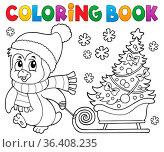 Coloring book Christmas penguin topic 7 - picture illustration. Стоковое фото, фотограф Zoonar.com/Klara Viskova / easy Fotostock / Фотобанк Лори
