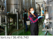 Female worker in protective mask check the quality of white wine at winery. Стоковое фото, фотограф Яков Филимонов / Фотобанк Лори