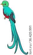 Cartoon illustration of quetzal bird animal character. Стоковое фото, фотограф Zoonar.com/Igor Zakowski / easy Fotostock / Фотобанк Лори